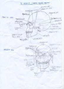 οστά2