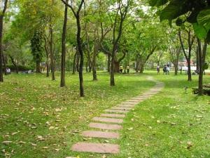 Benjasiri-Park-2