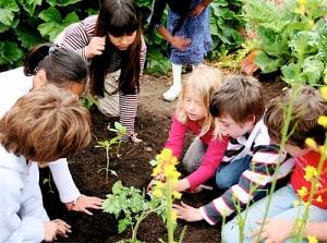 school-garden-middle